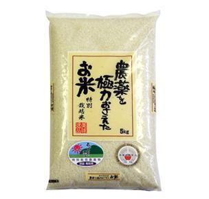 特別栽培米コシヒカリ 5kg 白米(鳥取県産)