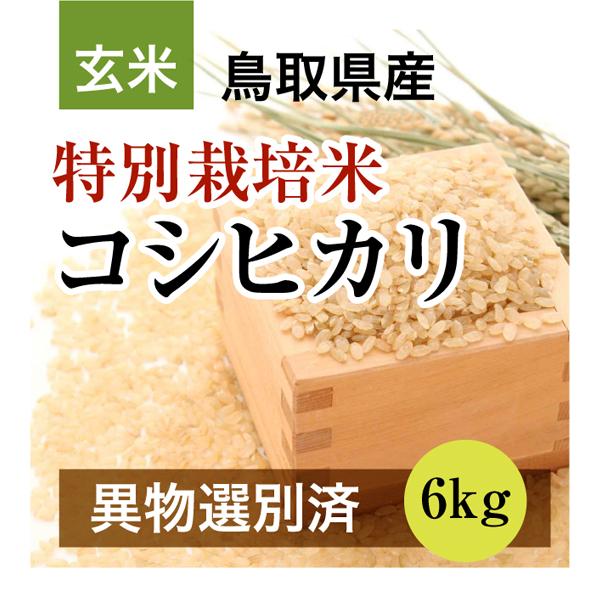 29年産 特別栽培米コシヒカリ 6kg 玄米(鳥取県産)