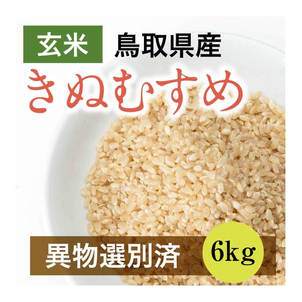 【新米】平成30年産きぬむすめ 6kg 玄米(鳥取県産)